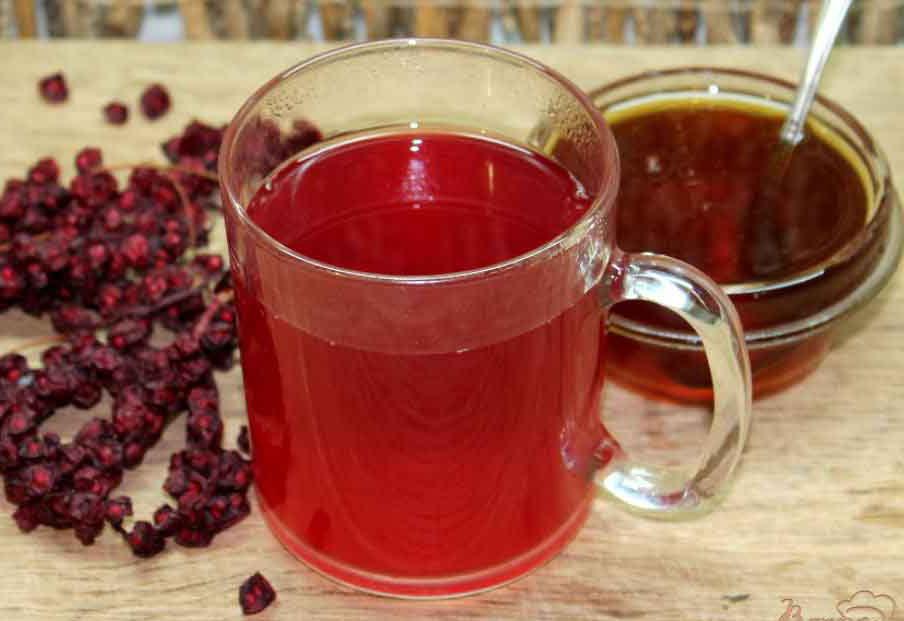 Напитки из лимонника - лечение гипотонии
